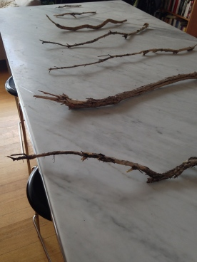 Step two is laying out twigs (about 6 different lengths to make the body of the tree). Then you can start tying the thread on between each, making sure the lengths of thread as close to the same as possible.